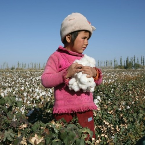 Supply Unchained- Tackling Modern Slavery in Business Supply Chains